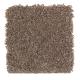 Pleasing Nature in Tweed - Carpet by Mohawk Flooring