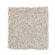 Tonal Chic I in Ancestral Haze - Carpet by Mohawk Flooring