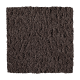 Continuing Vision in Swiss Cocoa - Carpet by Mohawk Flooring