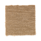 Composed in Parchment - Carpet by Mohawk Flooring