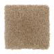 Creative Factor III in Desert Mud - Carpet by Mohawk Flooring