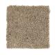Emerging Image III in Buckskin - Carpet by Mohawk Flooring
