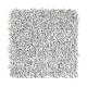 Soft Dimensions I in Autumn Fog - Carpet by Mohawk Flooring