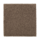 Organic Beauty I in Nutmeg - Carpet by Mohawk Flooring