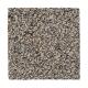 Opulent Attraction in Elmwood - Carpet by Mohawk Flooring