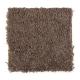 Living Legacy in Fudge Bar - Carpet by Mohawk Flooring
