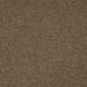 Memorable View in Nouveau - Carpet by Mohawk Flooring