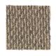 Ridgeway II in Coast Pointe - Carpet by Mohawk Flooring