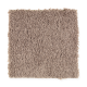 Famous Fair in Wrangler - Carpet by Mohawk Flooring