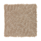 Soft Charm in Ancient Treasure - Carpet by Mohawk Flooring