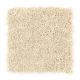 Modern Ease in Atmosphere - Carpet by Mohawk Flooring