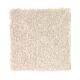 True Harmony in Homespun - Carpet by Mohawk Flooring