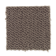 Taylor Cove in Baroque Brown - Carpet by Mohawk Flooring