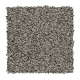 Preferably Soft I in Cinder - Carpet by Mohawk Flooring