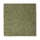 Awaited Delight in Hunter's Glen - Carpet by Mohawk Flooring