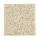 Nature's Appeal II in Soft Linen - Carpet by Mohawk Flooring