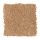 Comfortable Creation II in Spiced Tea - Carpet by Mohawk Flooring