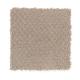 Soft Cheer in Gazelle - Carpet by Mohawk Flooring