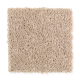 Comfort Zone in Sesame - Carpet by Mohawk Flooring