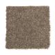 Stylish Story II in Rocky Ridge - Carpet by Mohawk Flooring