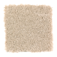 Enticing Objective in Whole Grain - Carpet by Mohawk Flooring