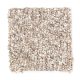 Andantino in Shell Beach - Carpet by Mohawk Flooring