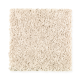 Top Card in Canvas Cloth - Carpet by Mohawk Flooring