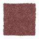Vivid Instinct in Intrigue - Carpet by Mohawk Flooring