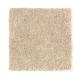 New Chapter II in Blonde Beige - Carpet by Mohawk Flooring