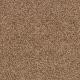 Churchill in Timberline - Carpet by Mohawk Flooring
