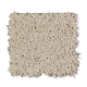 Creative Charm in Wind Chill - Carpet by Mohawk Flooring
