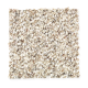 Baycliff in Graceful - Carpet by Mohawk Flooring