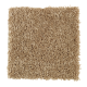 Graceful Beauty in French Canvas - Carpet by Mohawk Flooring