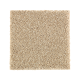 Nature's Appeal I in Raffia Basket - Carpet by Mohawk Flooring