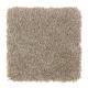 Homefront II in Teak - Carpet by Mohawk Flooring