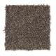 Harmony in Legend - Carpet by Mohawk Flooring