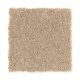 Stylish Story II in Early American - Carpet by Mohawk Flooring