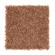 Stylish Silhouette in Sweet Potato - Carpet by Mohawk Flooring