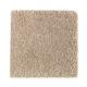 Serene Sierra in Brushed Suede - Carpet by Mohawk Flooring