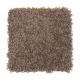 Stylish Silhouette in Rock Wall - Carpet by Mohawk Flooring