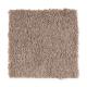 Living Legacy in Wrangler - Carpet by Mohawk Flooring