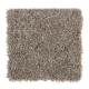 Rare Details in Warm Stone - Carpet by Mohawk Flooring