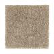 Fan Club in Rock Wall - Carpet by Mohawk Flooring