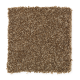 Forever Famous in Saddle Tan - Carpet by Mohawk Flooring