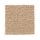 Composed in Contessa - Carpet by Mohawk Flooring