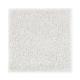 Luxurious Desire in Celestial - Carpet by Mohawk Flooring