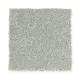 New Chapter II in Atlantic - Carpet by Mohawk Flooring