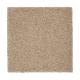 Splendid Freedom in Belvedere - Carpet by Mohawk Flooring