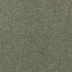 Blissful Elegance in Organic Green - Carpet by Mohawk Flooring
