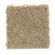 Modern Destination in Safari Tan - Carpet by Mohawk Flooring